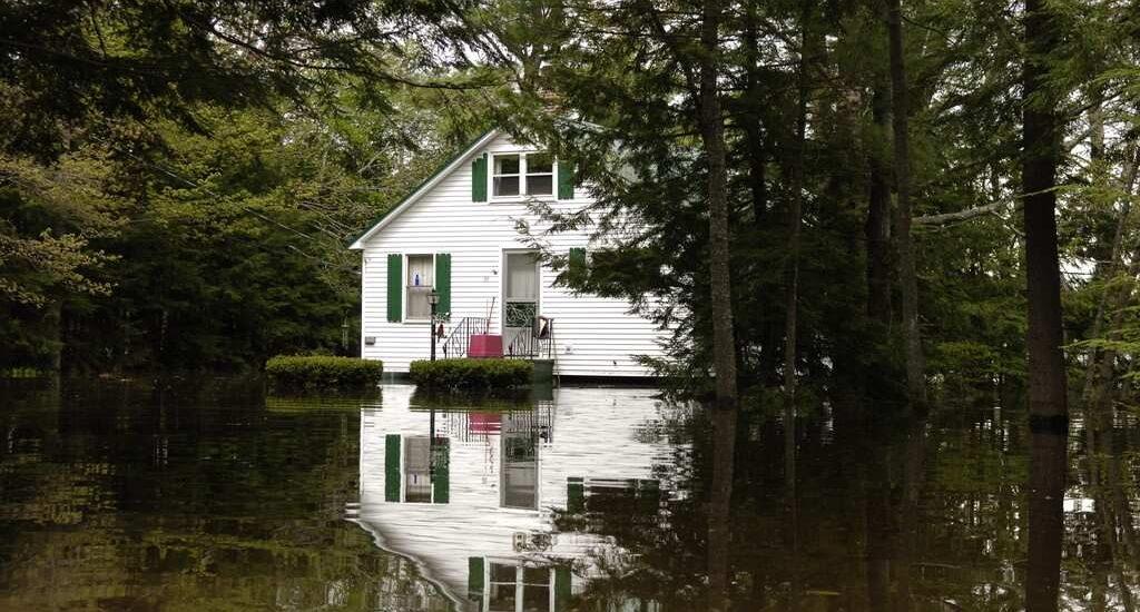 Flood - Blog Post Image